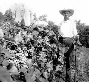 wine_history_kemper