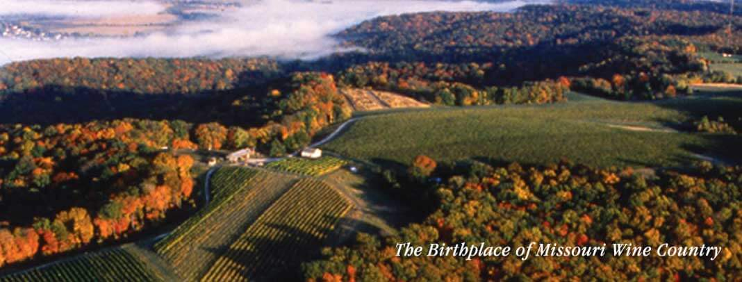 home_slider_vineyard