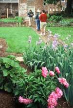 garden_150