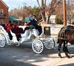 Hermann carriage tours