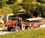 Hermann Farm tram tour